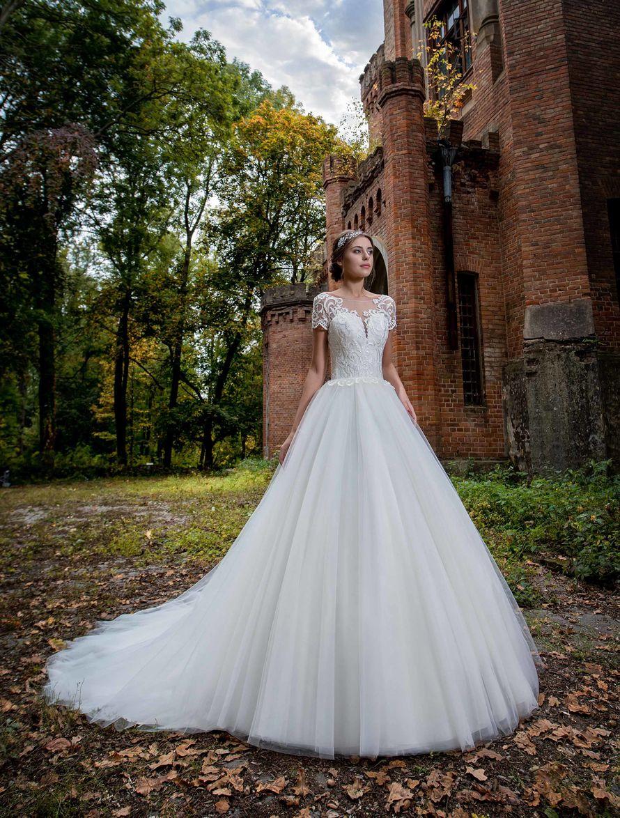 свадебные платья напрокат в зеленограде фото адрес так