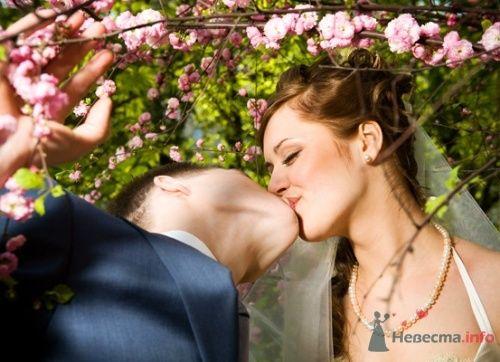 Фото 12769 в коллекции Свадебный - Невеста01