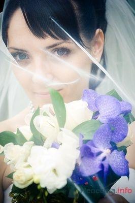 Фото 13934 в коллекции Свадебный - Невеста01