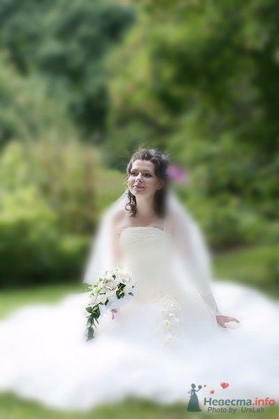 Фото 44276 в коллекции Мои работы  - Невеста01