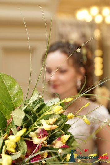 Фото 102431 в коллекции Мои работы  - Невеста01