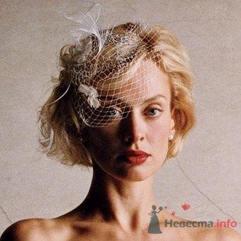 """Фото 15382 в коллекции Мои фотографии - Агентство """"Most"""" - организация свадеб"""