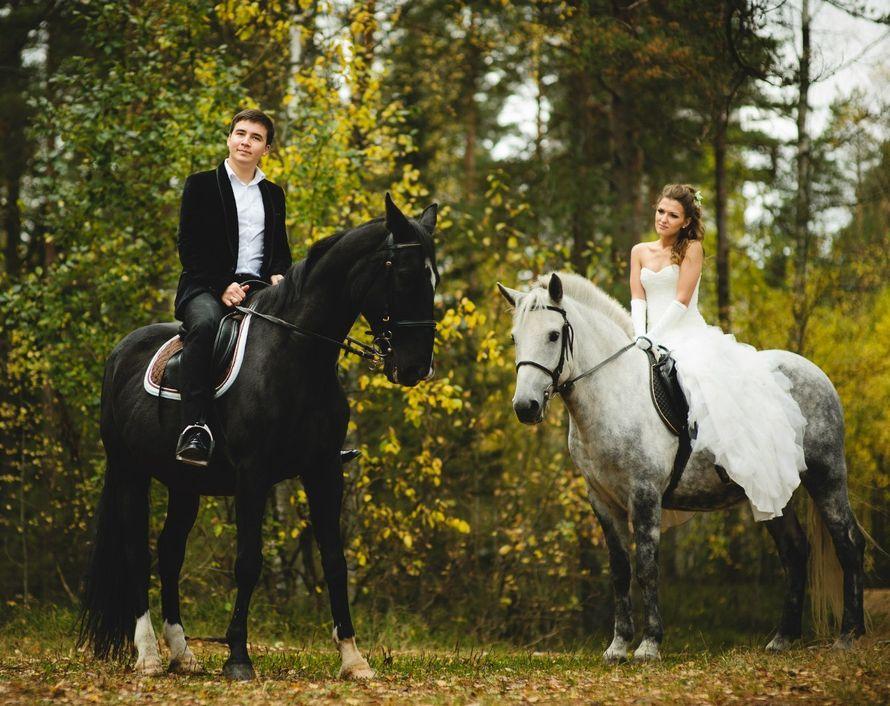 Жених и невеста сидят на черной и белой лошадях - фото 3558803 Свадебное агентство Любови Андерсон