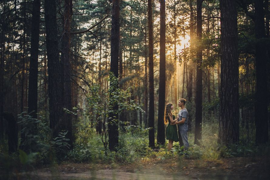 видео парочка пошла погулять в лес - 2