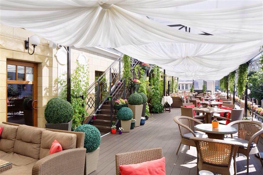 Фото 4270575 в коллекции Портфолио - Светлый restaurant и bar