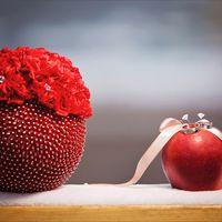 Зимний букет невесты и подушечка для колец в виде яблочка)
