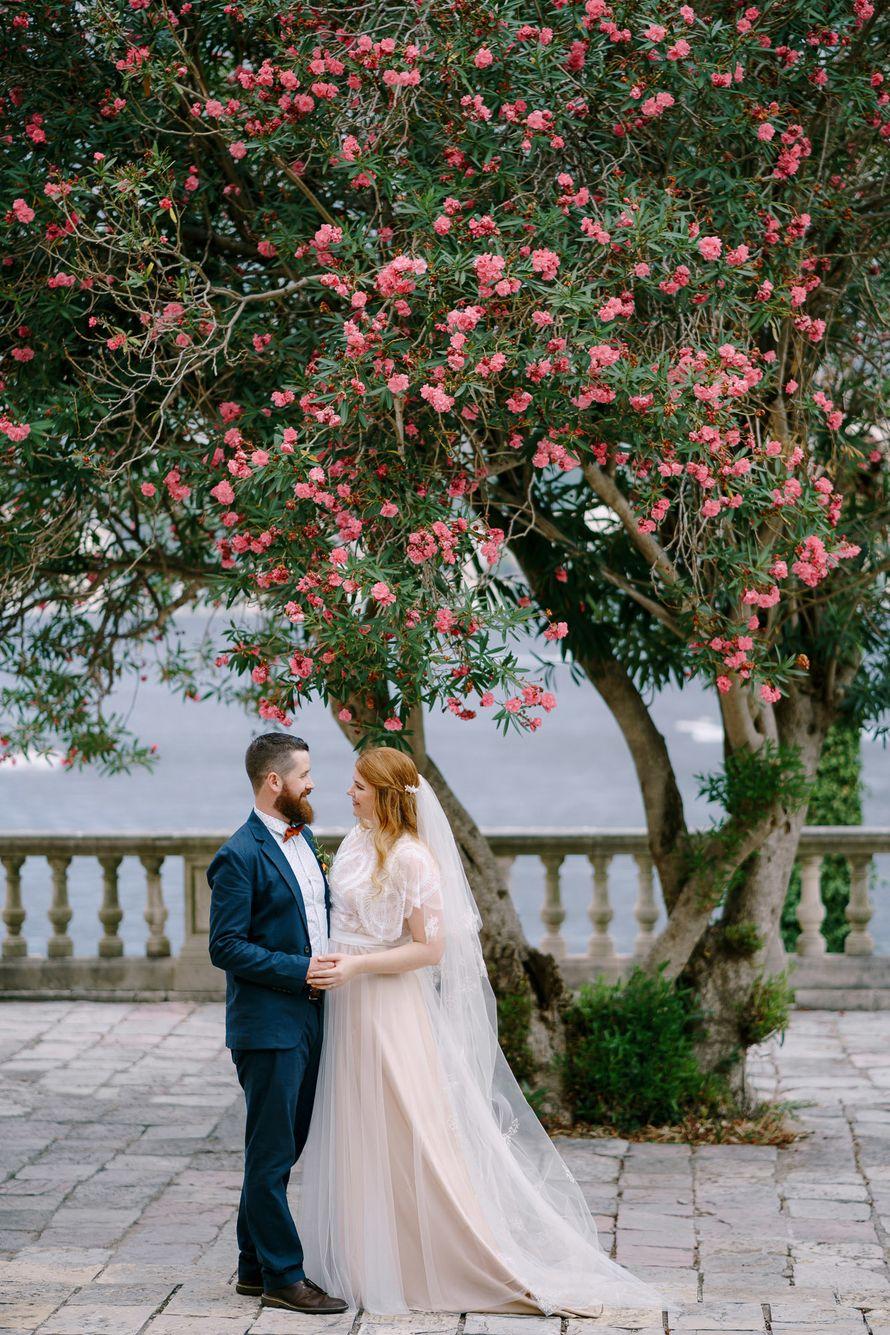 Wedding photoshoot in Montenegro  - фото 18285282 Фотограф Владимир Надточий