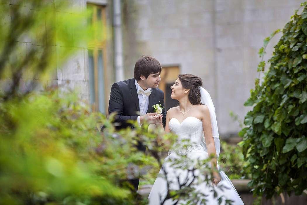 какими объективами пользуются свадебные фотографы желанию конные прогулки