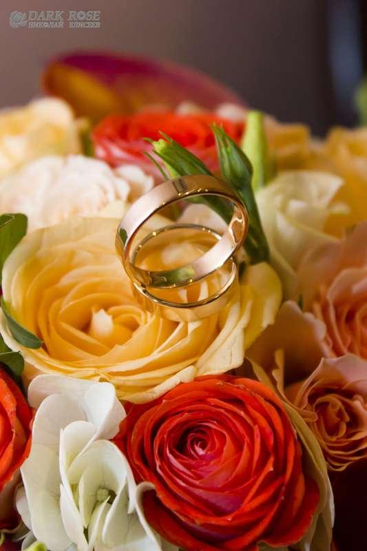Золотые обручальные кольца, выполнены в классическом стиле  на бутонах разноцветных роз. - фото 1769667 Dark rose - фото и видеосъёмка свадеб