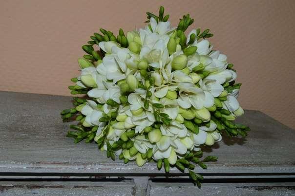 Нежный букет невесты из белоснежных ароматных фрезий!! )) - фото 2536381 Барбарис studio - студия флористики, декора