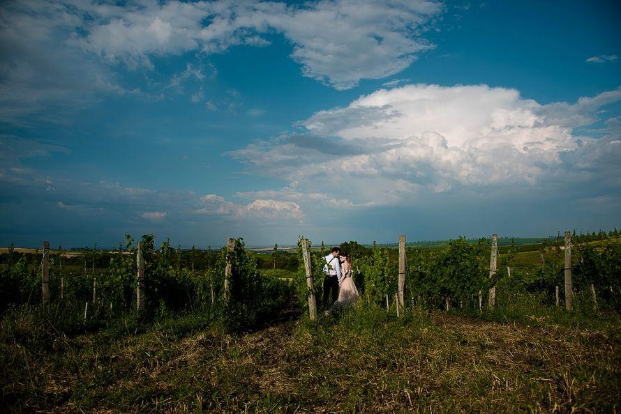 Фото 11486260 в коллекции Свадебный альбом - Фотограф Анна Рагушкина