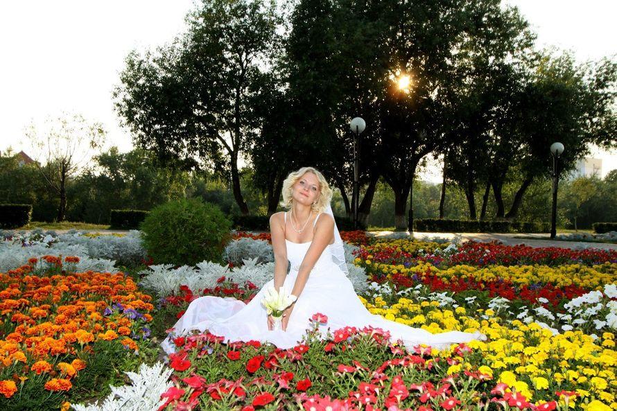 Фото 16557484 в коллекции подборка фотографий - Ильин Виктор фотограф