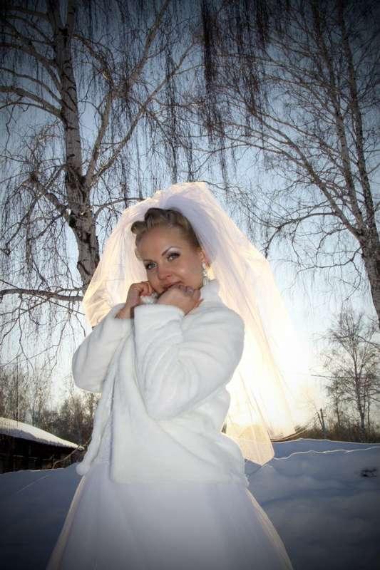 Фото 16557492 в коллекции подборка фотографий - Ильин Виктор фотограф