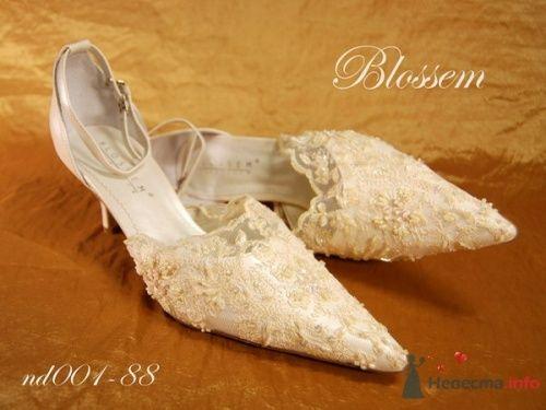 """Фото 15120 в коллекции Свадебная обувь - Свадебный салон """"Хельга"""""""