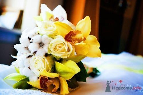Орхидеи с розами - фото 18419 elkatrin
