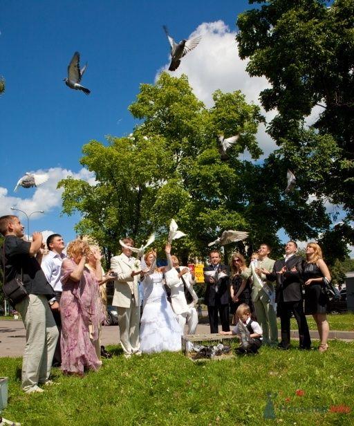 Фото 41873 в коллекции Наша зажигательная Свадьба!11.07.2009 - КатёночкаИзЗелика