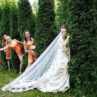 Невеста и её подружки в оранжевом