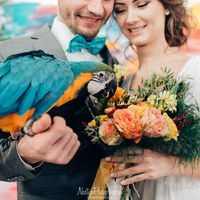 яркая фотосессия с красками и птицей