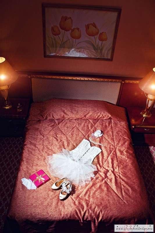 Фотограф Скобелева Ирина сайт  группа  - фото 16603936 Фотограф Скобелева Ирина