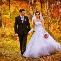 Фотоотчеты о свадьбах, осень, лес, прогулка