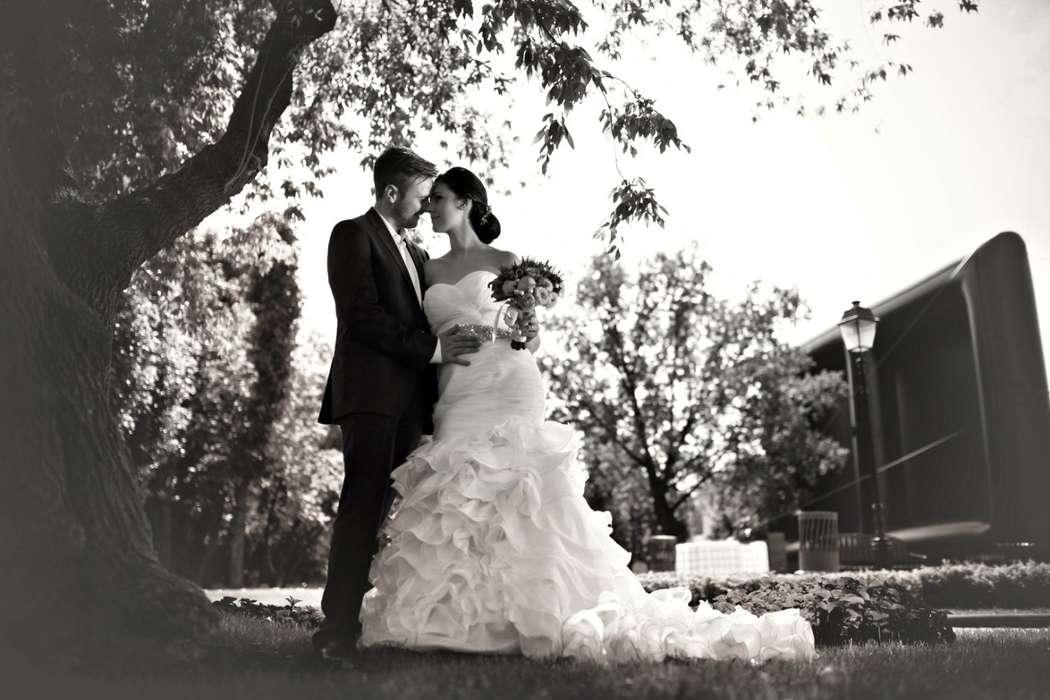 Фото 2084646 в коллекции Свадебная подборка фотографий - Фотограф Roman Barabanshchikov