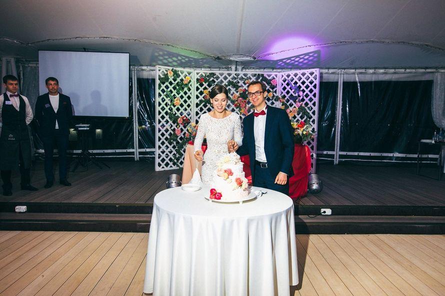 Фото 14906744 в коллекции #попробуйНашАрбуз - Just Mood - свадебное агентство