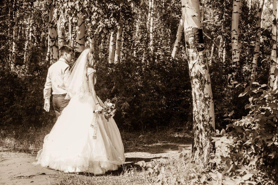 """Фото 2754733 в коллекции Мои фотографии - Фотограф, Дом невесты """"Шикарная Свадьба"""""""