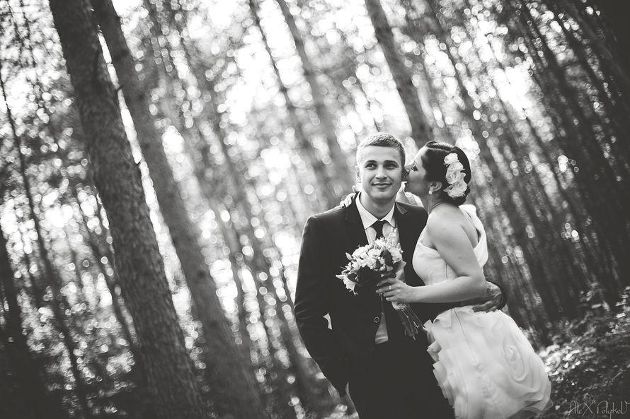 Фото 2130630 в коллекции Мои фотографии - Свадебный Фотограф Александр Поляков