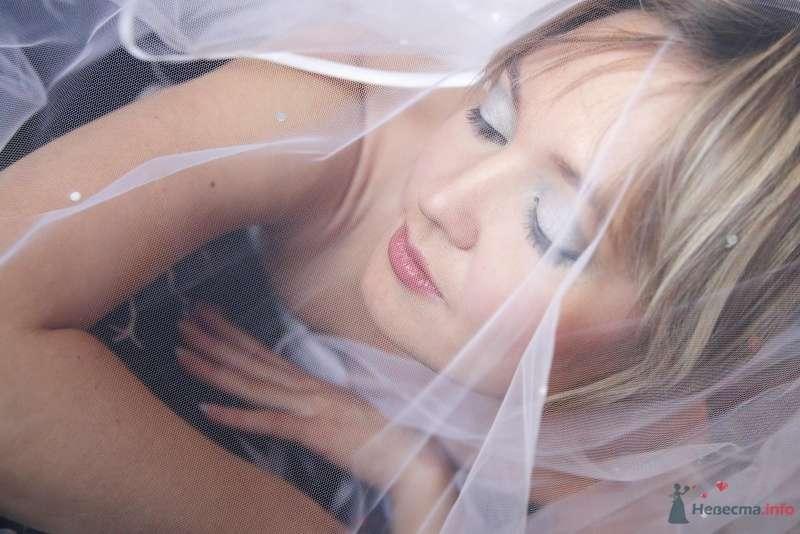 Фото 60005 в коллекции Свадьба А+А (25 апреля 2009) - Annet