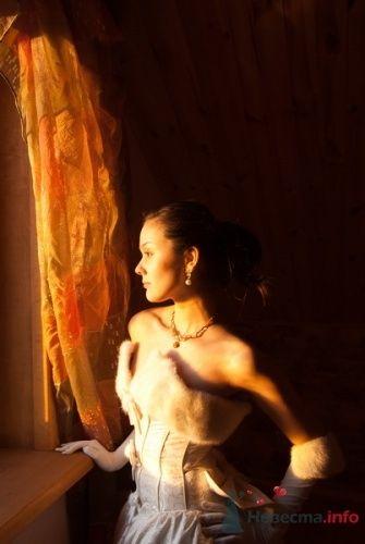 Фото 16624 в коллекции Мои фотографии - Фотограф Марина Красько