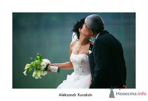 Фото 14479 в коллекции свадебные фотографии - Kuraksin Photo - фотоуслуги