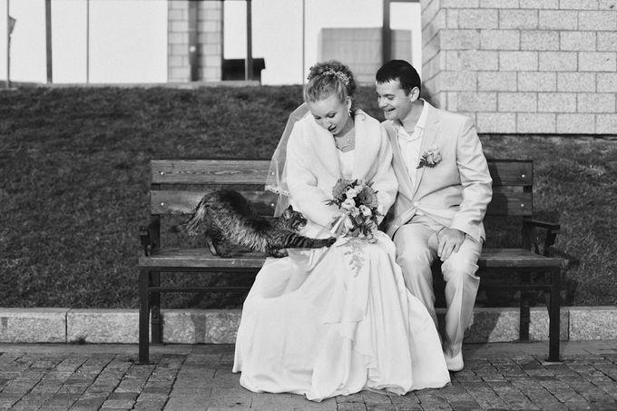 До свадьбы нин фото