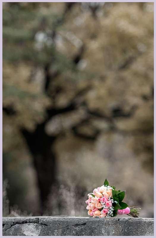 Фото 2199040 в коллекции Мои фотографии - TVC - свадебное видео