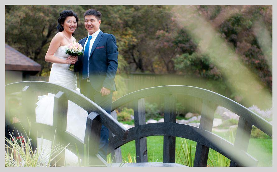 Фото 2199054 в коллекции Мои фотографии - TVC - свадебное видео