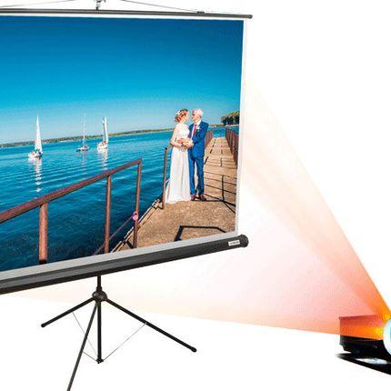 Аренда экрана и мультимедийного проектора