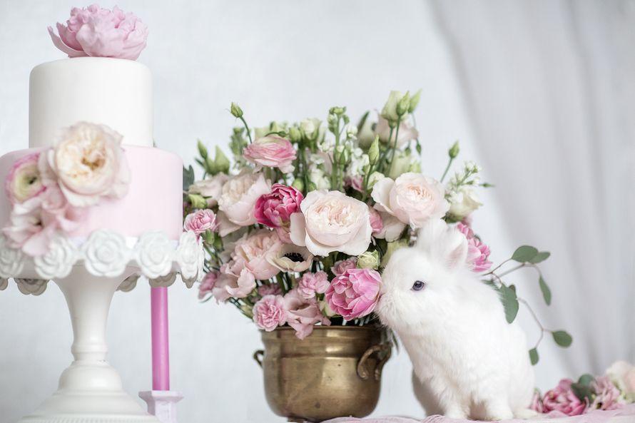 """Фото 8898690 в коллекции Утро невесты - """"Luxe svadba"""" - свадьба в Чехии"""