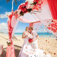Свадебная беседка в коралловых тонах