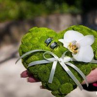 Зелёная подушечка для колец с живой орхидеей