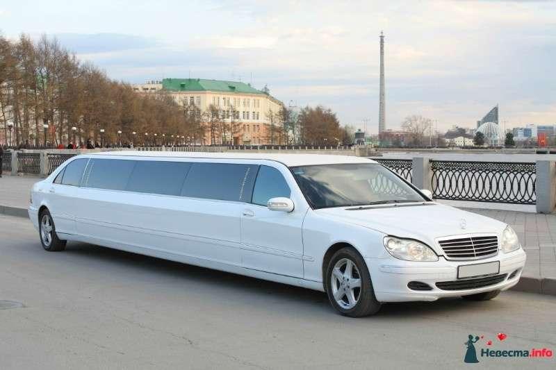 """Mercedes S500, 220 кузов, белый лимузин - фото 422007 Агенство """"Свадебный кортеж"""""""