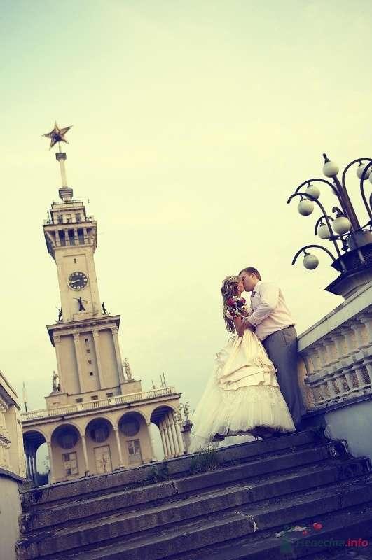 Фото 59782 в коллекции Наша свадьба - Кaterina