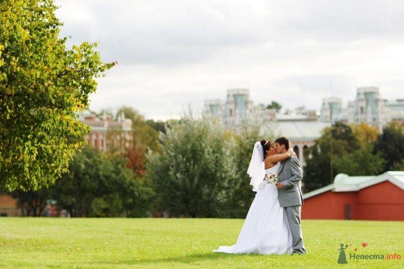 Фото 52761 в коллекции Наша долгожданная свадьба!!!! - justy4ka