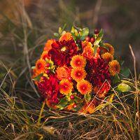 Огненный осенний букет Анечки из бордовых георгин, роз