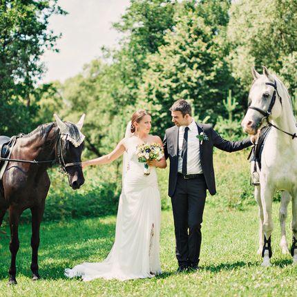Аренда верховых лошадей и кареты для фотосессии