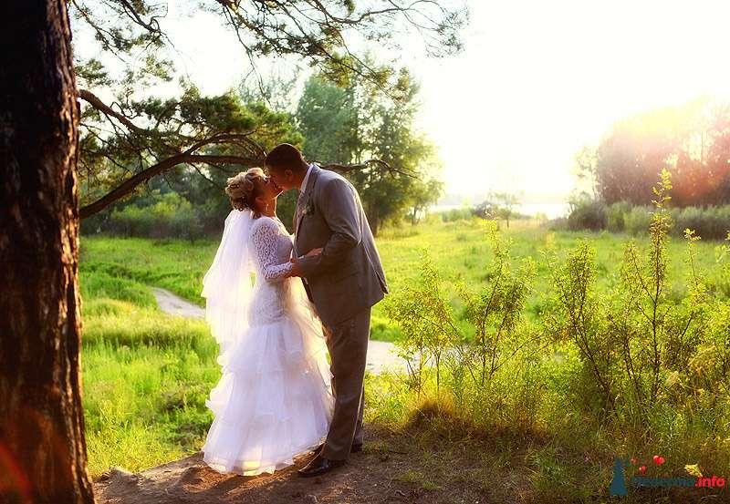 Фото 184745 в коллекции Свадебные фотографии - Свадебный фотограф Александр Аластар