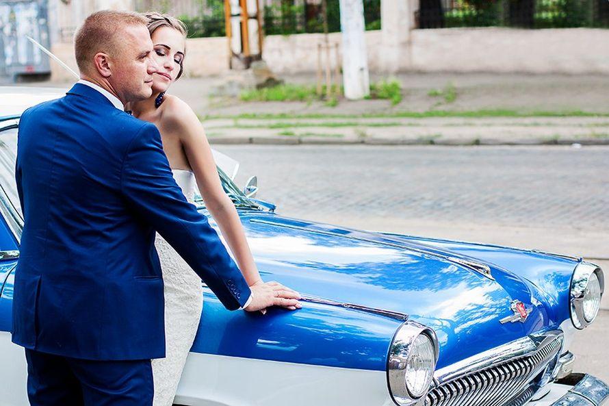 Черничная свадьба. Blueberry wedding - фото 2550241 Свадебный фотограф Lovelywednet