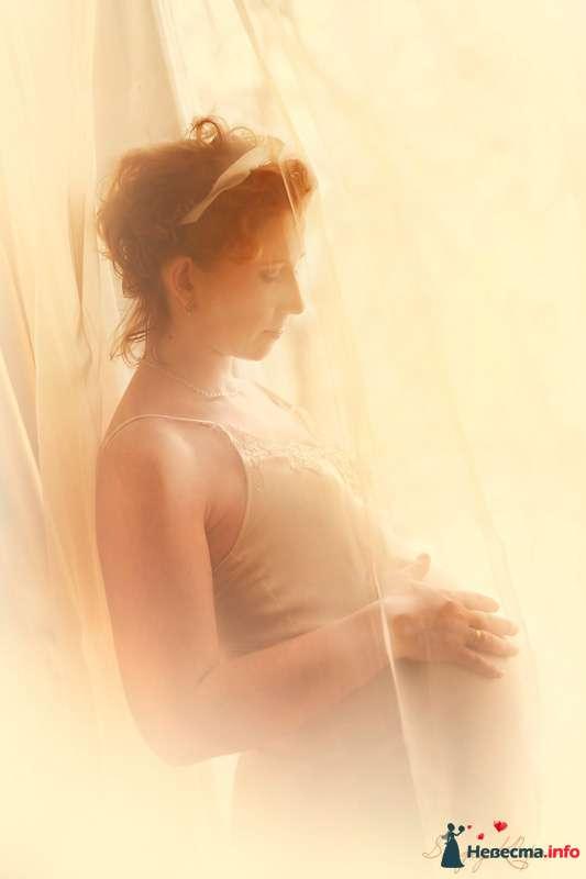 Фото 105538 в коллекции В ожидании малыша - Свадебный фотограф Сергей Клопов