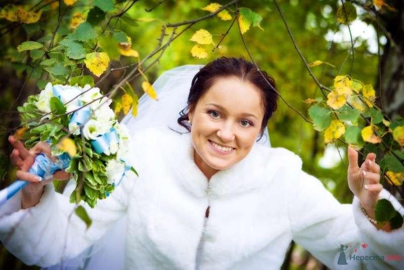 Фото 62377 в коллекции фотоработы Виктории Вяльченковой - Свадебный фотограф - Виктория Вяльченкова