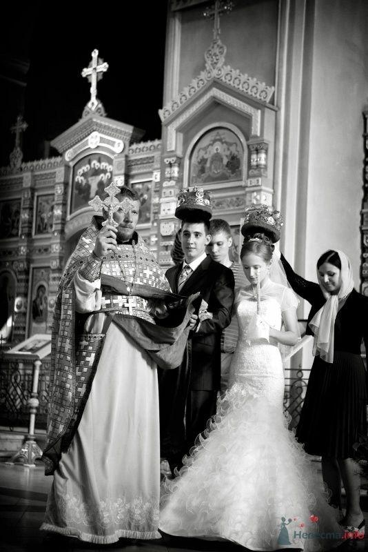 Фото 68793 в коллекции фотоработы Виктории Вяльченковой - Свадебный фотограф - Виктория Вяльченкова