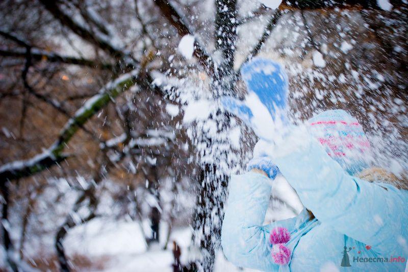 Фото 70931 в коллекции фотоработы Виктории Вяльченковой - Свадебный фотограф - Виктория Вяльченкова