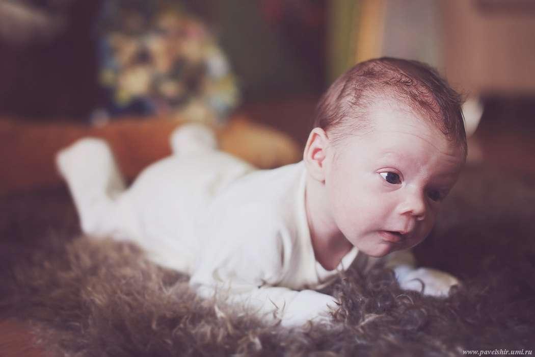 Фото 3139943 в коллекции Мальчик Лев - Фотограф Павел Широковских